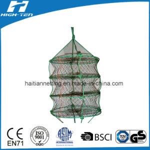 Scallop Net/Oyester Farming Net/Lantern Net pictures & photos