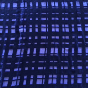 Plain Dye Burn out Silk Velvet in Small Check Pattern pictures & photos