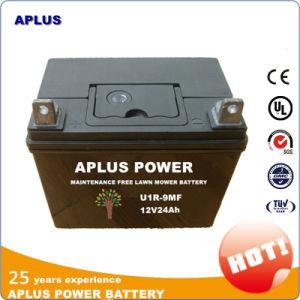 U19 Maintenance Free Lead Acid Lawn Mower Battery 12V 24ah pictures & photos
