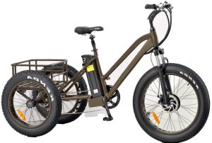 24inch and 20inch Fat Tire Electric Tricycle pictures & photos