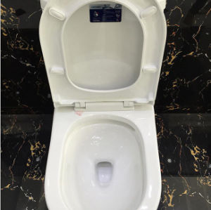 China Manufacturer One Piece Double Flushing Toilet pictures & photos