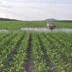 EDDHA-Fe Organic Fertilizer Organic pictures & photos