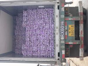 5.0 Normal White Garlic Export to Dubai pictures & photos
