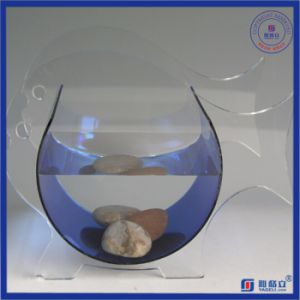 Irregular Round Plexiglass Acrylic Fish Tank pictures & photos
