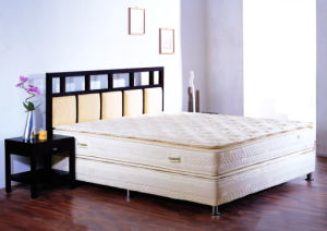 Bonnel Spring Mattress (KC-24)
