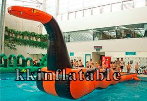 Inflatable Water Slide (KK-WS-10)