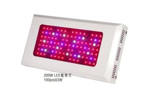 300W 85-265V Red: Blue=8: 1 LED Grow Light for Plant pictures & photos