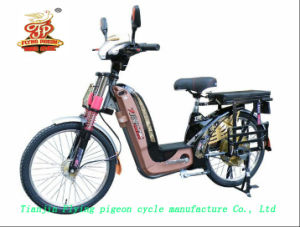 Heavy Duty &Large Loading Capacity E-Bikes (FP-EB-005) pictures & photos