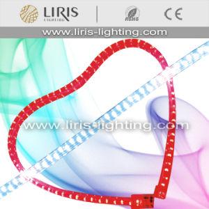 LED Rope Light (BY-LRF-3W-240V/120V)