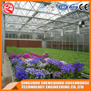 Agriculture Multi-Span Garden Toughened Glass Greenhouse pictures & photos