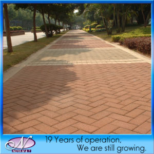 Red / Yellow Water Permeable Brick / Pervious Paving for Driveway, Walkway pictures & photos