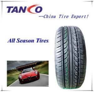 "All Season Car Tyre 12""-24"" pictures & photos"