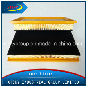 Auto Car with Sponge PU Air Filter (1109100-DS01L) pictures & photos