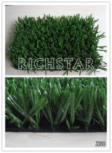 Artificial Grass, Sports Grass, Football Grass, Socer Grass, Landscape Grass (Z50) pictures & photos
