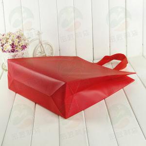 Top Sell Fashion Shopping Non Woven Bags Non Woven Bag (My-019) pictures & photos