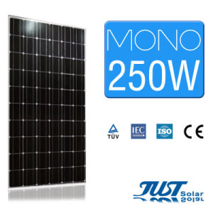 250W Mono PV Module for Sustainable Energy pictures & photos