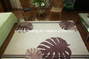 Raschel Mink Carpet/Mat/Rug (MQ-CP001) pictures & photos