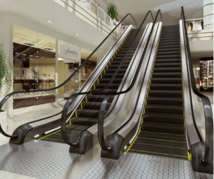 Vvvf Control Commercial Escalator with 30 Degree 1000mm/800mm/600mm Step Width pictures & photos