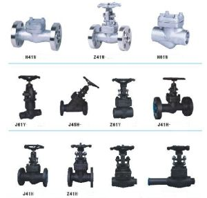 Forged Valve pictures & photos