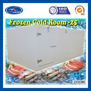 Chiller and Freezer Room for Meat Seafood and Ice-Cream pictures & photos