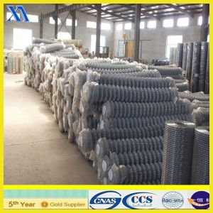 PVC Coated Chain Link Mesh (XA-CL016) pictures & photos