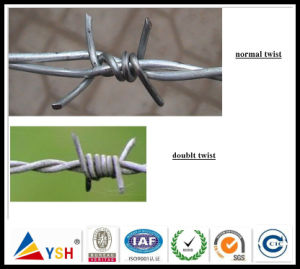 Electro Galvanized Barbed Wire, Double Twist