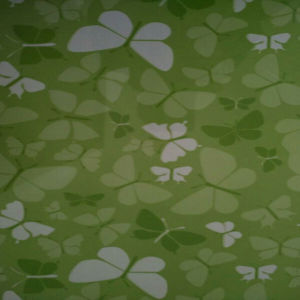 Green Butterfly Design PPGI