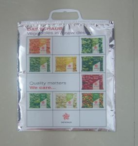 Thermal Bag Thermic Carrier Isothermal Bag Thermo Bag Hot Cold Bag pictures & photos