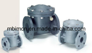 DIN Standard Swing Check Valve9pph, PVC, PVDF) pictures & photos