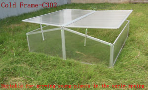 Cold Frame (C302) -Suitable for Growing Young Plants pictures & photos