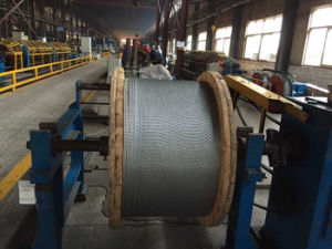 Galvanized Steel Wire, ACSR Core Wire, Stay Wire pictures & photos