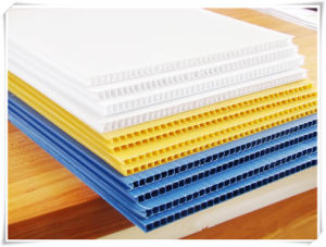 Natural White Pure Virgin PP Hollow Sheet for Printing pictures & photos