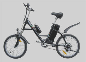 250W Mountain Style Steel Frame Cheap Electric Bike pictures & photos