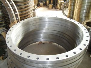 Forging Flange/Forged Flange pictures & photos