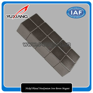 Nickel Plated Neodymium Iron Boron Magnet pictures & photos