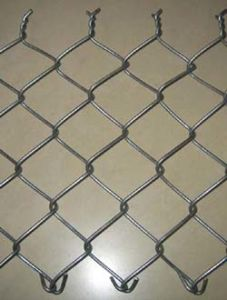 Hot Dipped Gal and PVC Coated Diamond Mesh (R-GHW) pictures & photos