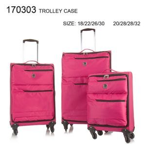Cabin Case with Spinner Wheels pictures & photos