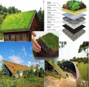 Plastic Dimple Drainage Sheet Used in Green Sloping pictures & photos