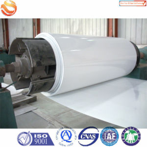 Stock Sell in Rolls Popular FRP Panel pictures & photos