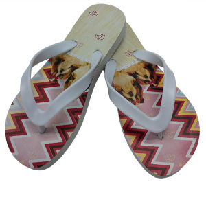 Disposable Pedicure Flip Flops pictures & photos