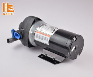 Best Quality Flojet Water Pump 12V/24V at Good Price pictures & photos