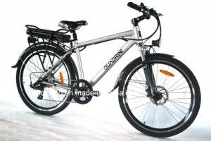 Professional Manufacturer Pas 250W Electric Bike (TDE04Z)
