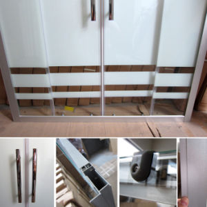 Superb Sliding Shower Screens (SC-013) pictures & photos