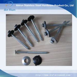 Galvanized Roofing Nails with Rubber Washer pictures & photos