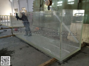 Large Acrylic Glass Fish Tank pictures & photos