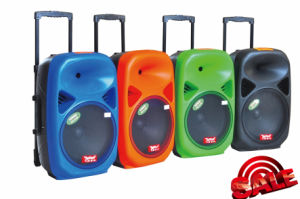 Professional Speaker Loudspeaker with Bluetooth USB (F28) pictures & photos