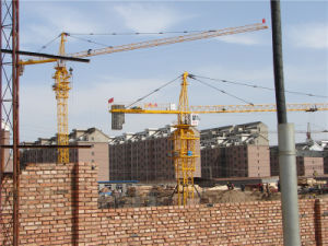 Crane Industry in China Hstowercrane pictures & photos