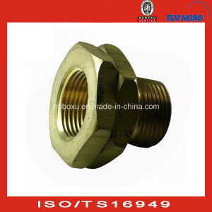 OEM Brass Fitting for Glable Market
