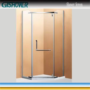 Magnetic Seal Strip Pivot Shower Door (WZ1431-2) pictures & photos