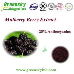Natural Mulberry Fruit Extract with 25% Anthocyanins